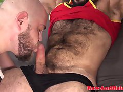 Chubby bear barebacked by kinky hairy chub